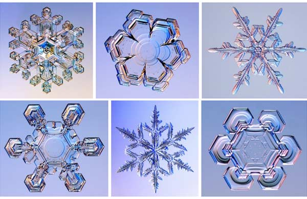 Awesome snow flake photos from SnowCrystals.com