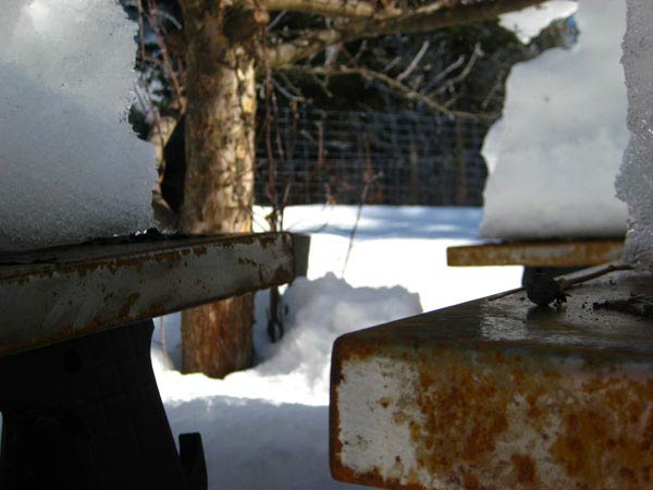 Metal panels rusting in winter
